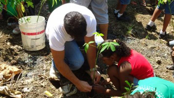 Plantio de árvores desperta consciência ecológica