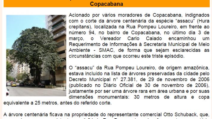Diário da Zona Sul 03/2013