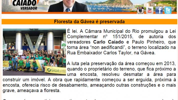 Diário da Zona Sul 04/2015