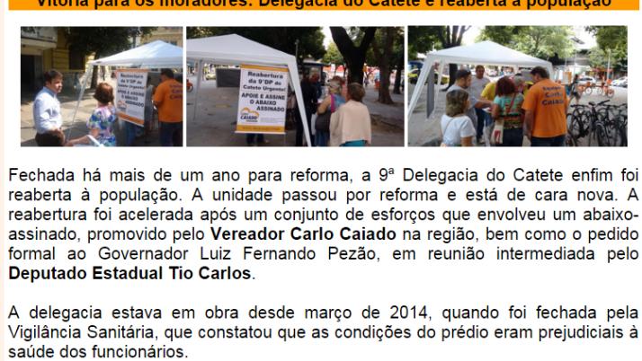 Diário da Zona Sul 11/2015