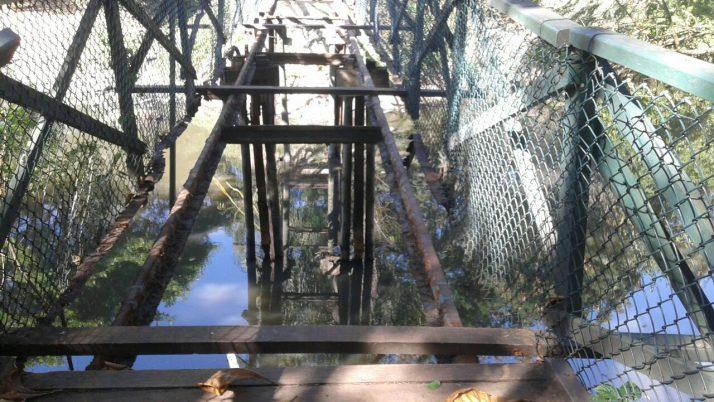 Caiado faz abaixo-assinado solicitando início imediato de recuperação das pontes de madeira