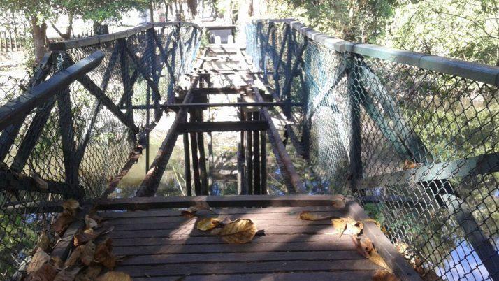 Caiado faz abaixo-assinado solicitando inicio imediato de recuperação das pontes de madeira