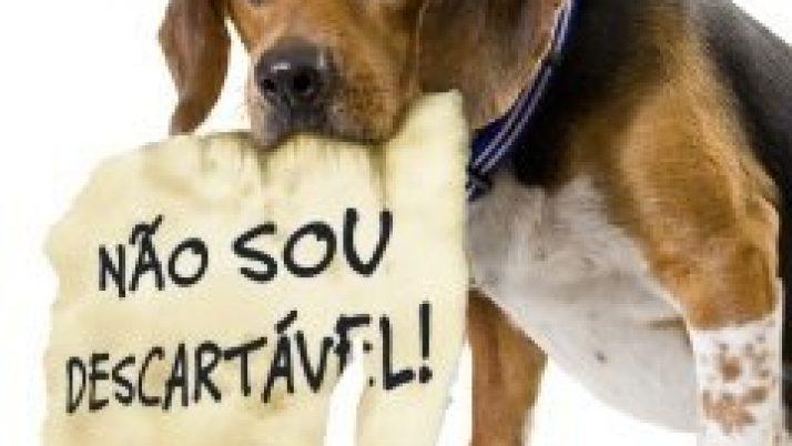 Câmara derruba veto do prefeito e aprova a criação do Fundo de Proteção Animal