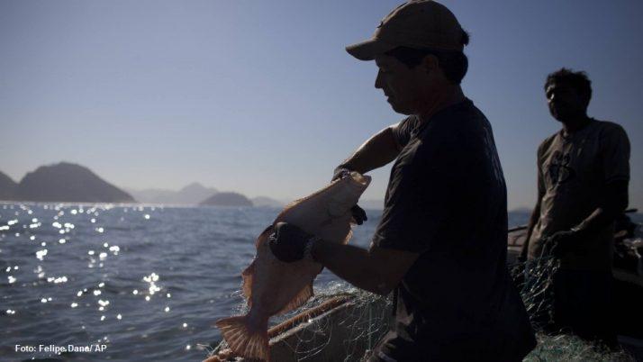É lei: Pesca artesanal vira patrimônio cultural e imaterial do Rio