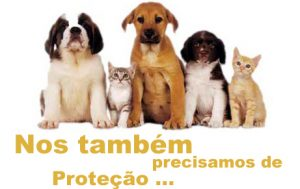 protec3a7c3a3o-dos-animais