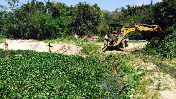 Iniciada a remoção de gigogas na Lagoinha do Parque Chico Mendes
