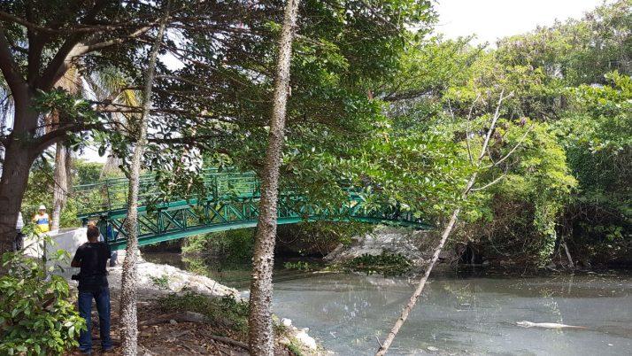 Construção da ponte sobre o Canal das Taxas avança