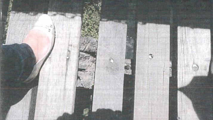 Caiado cobra substituição de passarelas sobre o Canal das Taxas