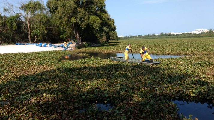 Vereador luta por limpeza permanente na Lagoinha, Canal das Taxas e do Rio Morto