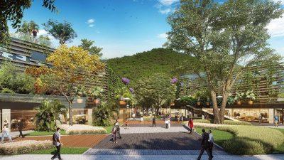 Câmara do Rio aprova criação de Parque Sustentável da Gávea